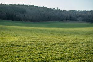 High-Speed Rail Lines From Prague Threaten Bohemian Farmlands