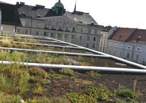 City of Brno Opens Subsidy Program To Fund Green Roofs To Reduce Emissions