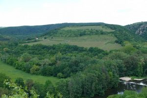 Research Supports Recognition of Šobes Vineyard in Znojmo as a UNESCO World Heritage Site