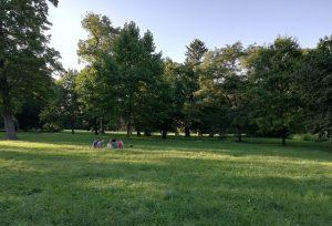 Lužánky Park, The Oldest Public Park in the Czech Republic, Celebrates 235 Years