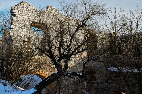devicky-castle-Pavlov-ruins-credit-KB-BD (9)
