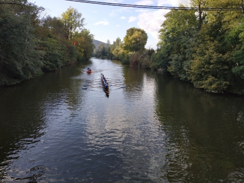 rowing race 2